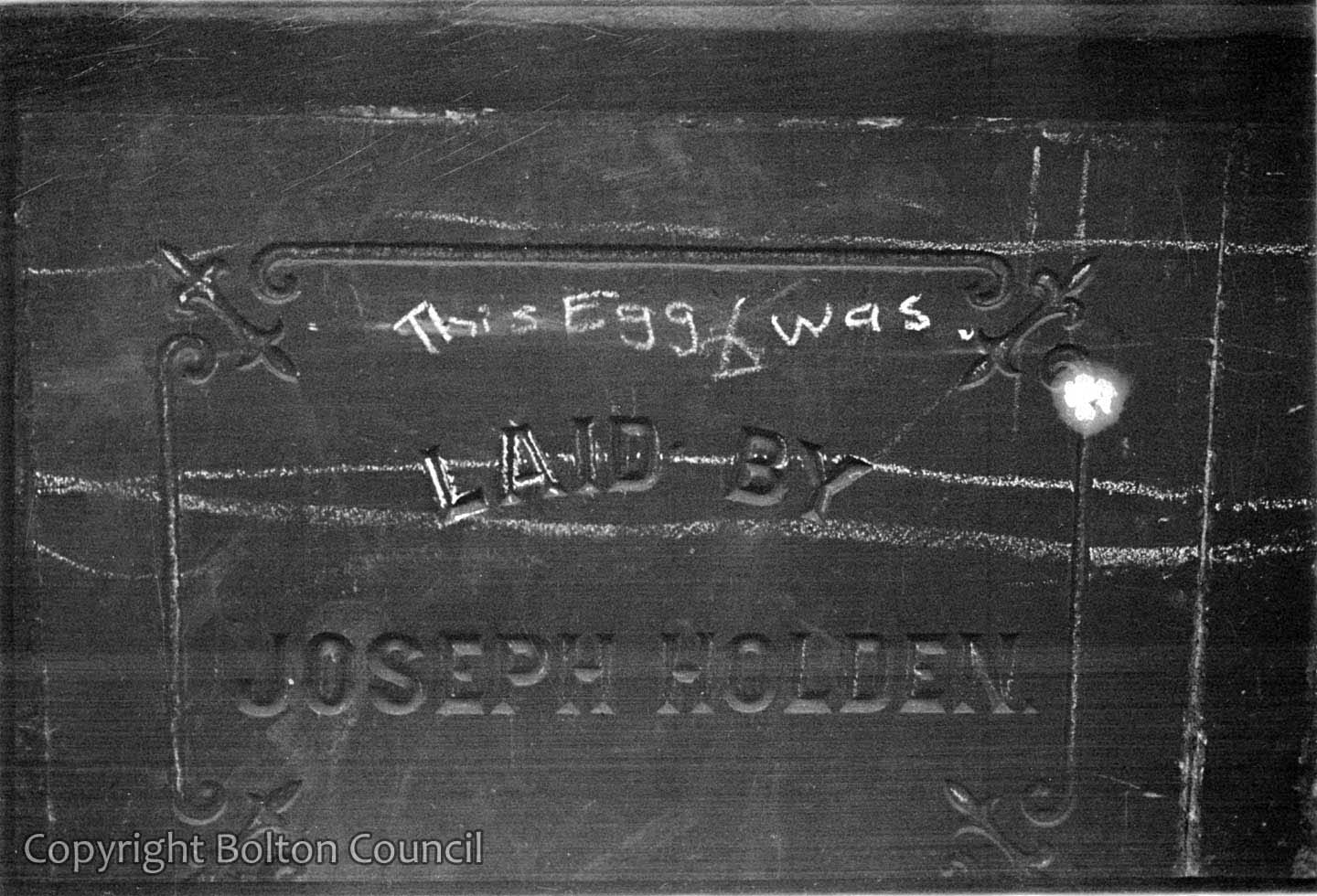This egg was laid by Joseph Holden