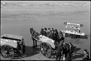 Oysters and Boat Cars